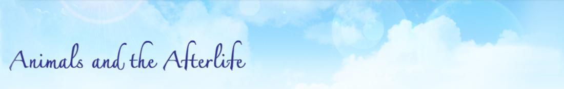 header-logo-11